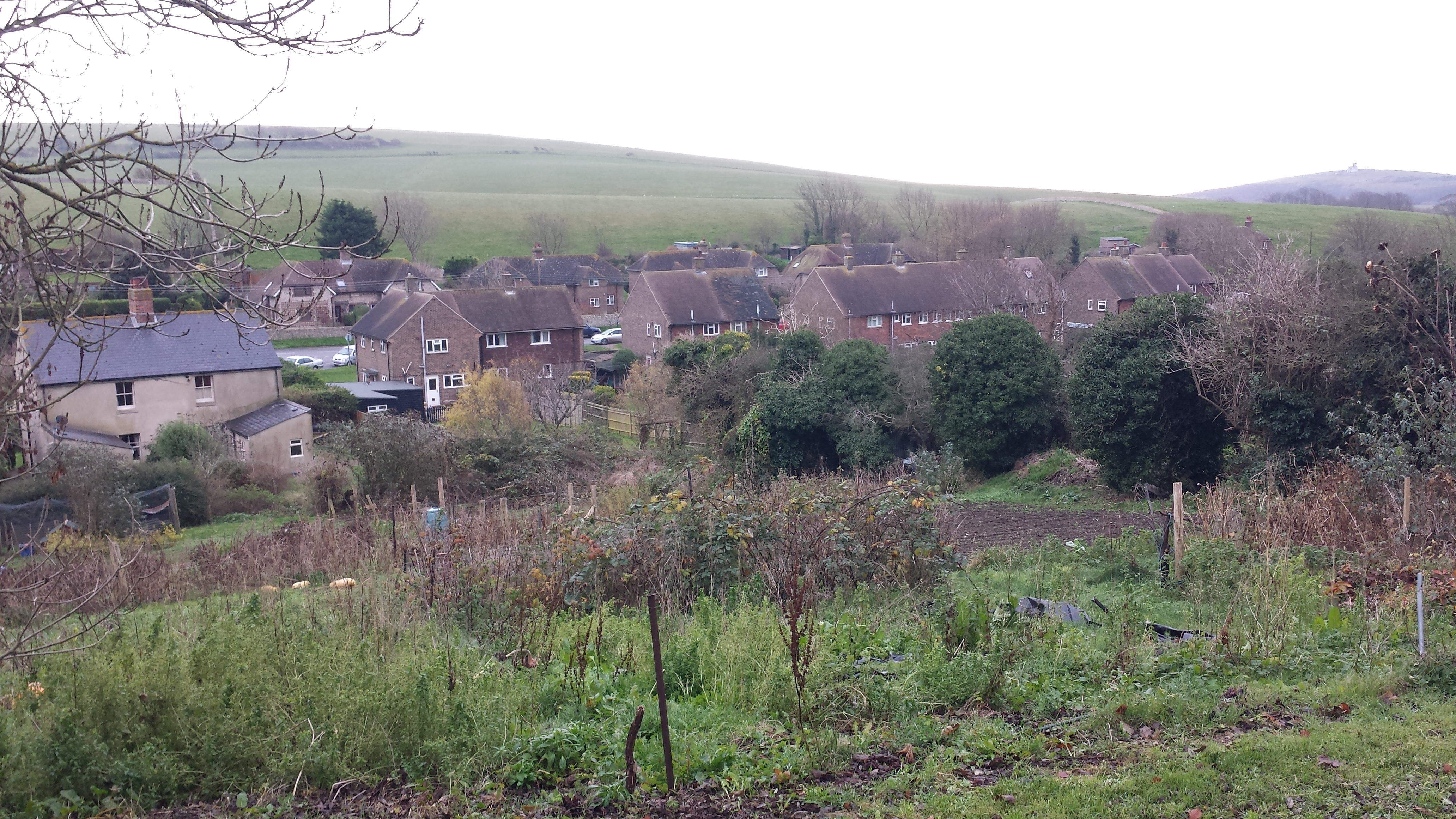 Remnants of old allotment in East Dean